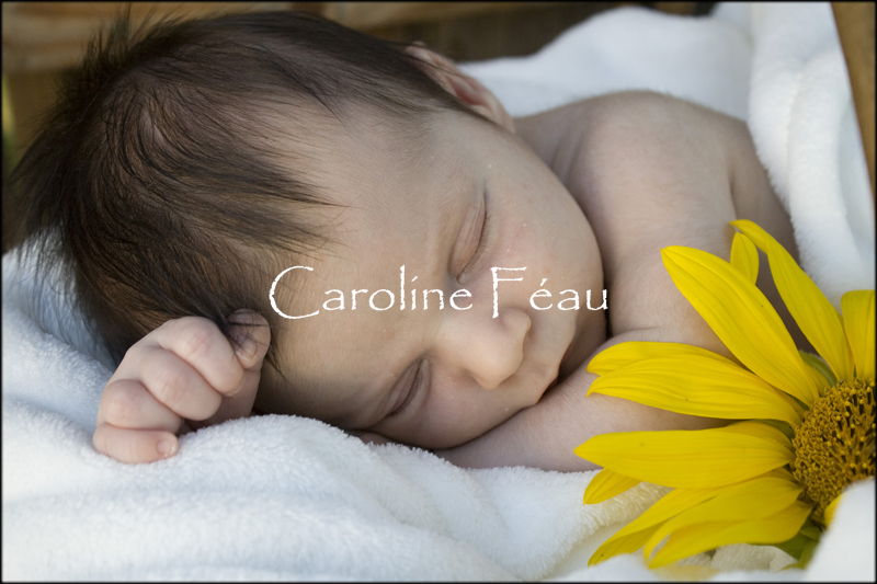 photographe naissance tours CF Photographe