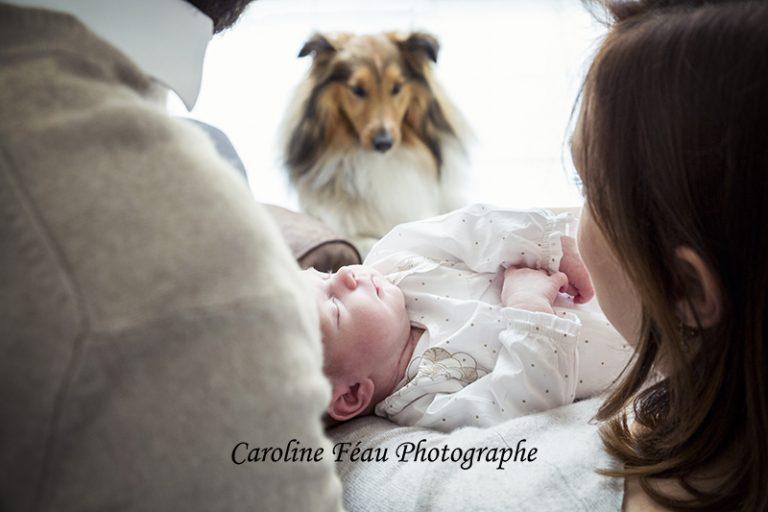 photo famille bébé chien CF Photographe